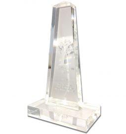 TCS_Pokal